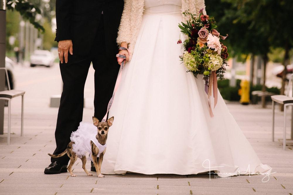collingwood-wedding-photographer-3471