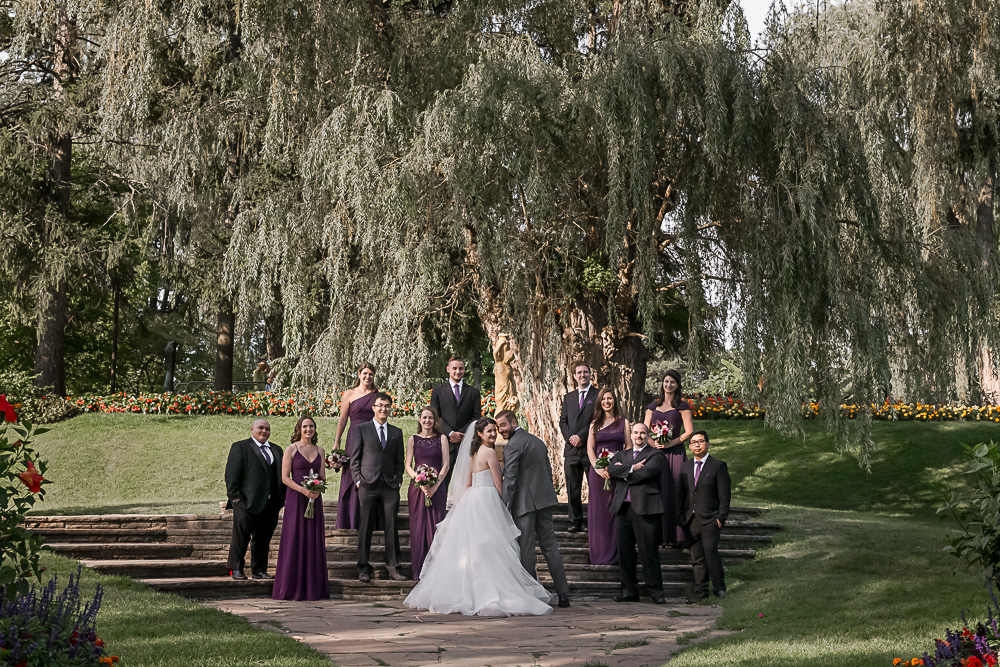 wedding party under willow tree